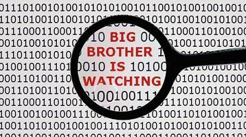 w-bigbrother-061113
