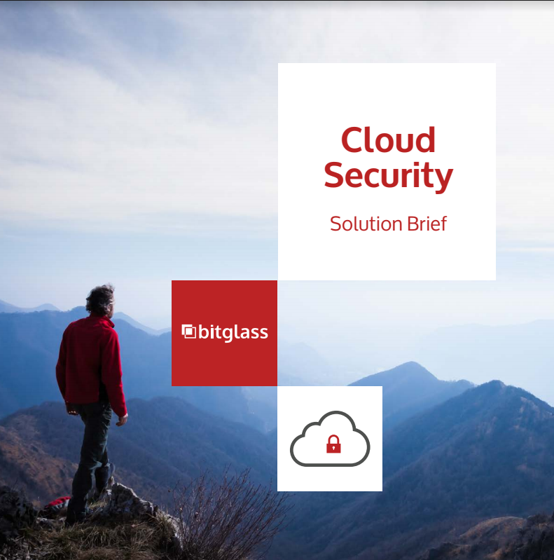 Cloud Security solution brief by Bitglass