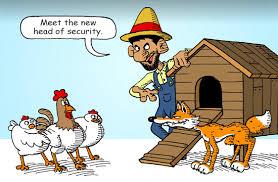 fox-hen-house